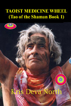 Taoist shaman taoist medicine wheel tao of the shaman